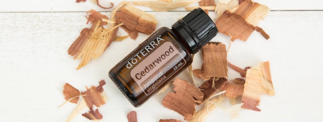 Utilizarile si beneficiile uleiului esential de cedru / Cedarwood de la Doterra
